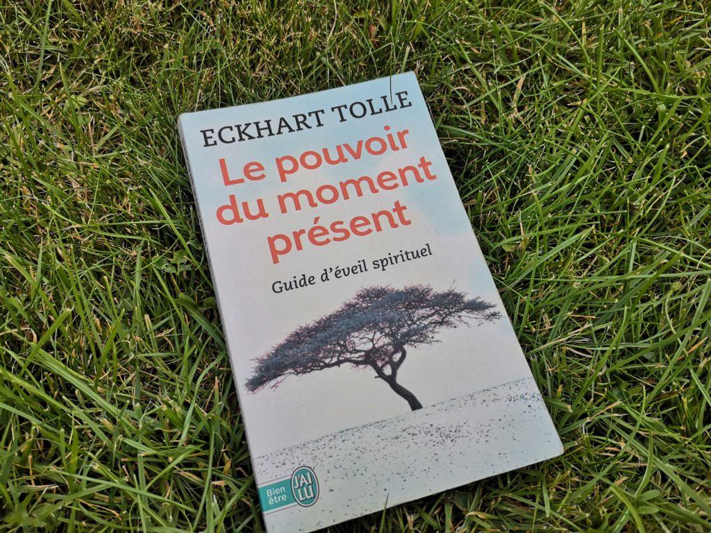 Steven Deschuyteneer Boeken Eckhart Tolle Le pouvoir du moment présent