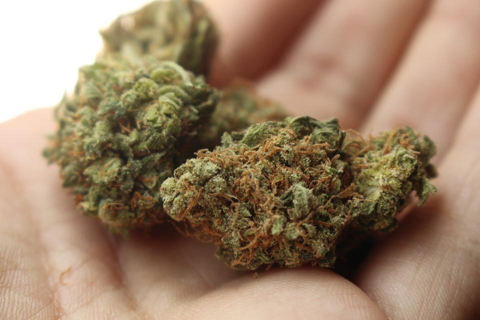 Steven Deschuyteneer Ik ben een natuurgeneeskundige en dit is wat je echt moet weten marijuana