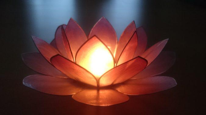 Steven Deschuyteneer Ontdekking van tantra lotus