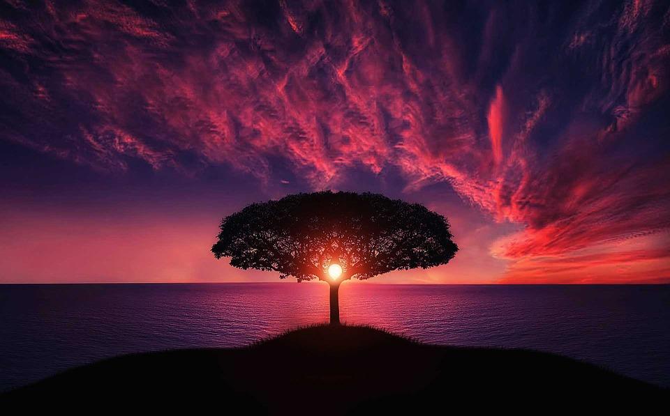 Steven Deschuyteneer 21 lessen voor de 21st eeuw boom