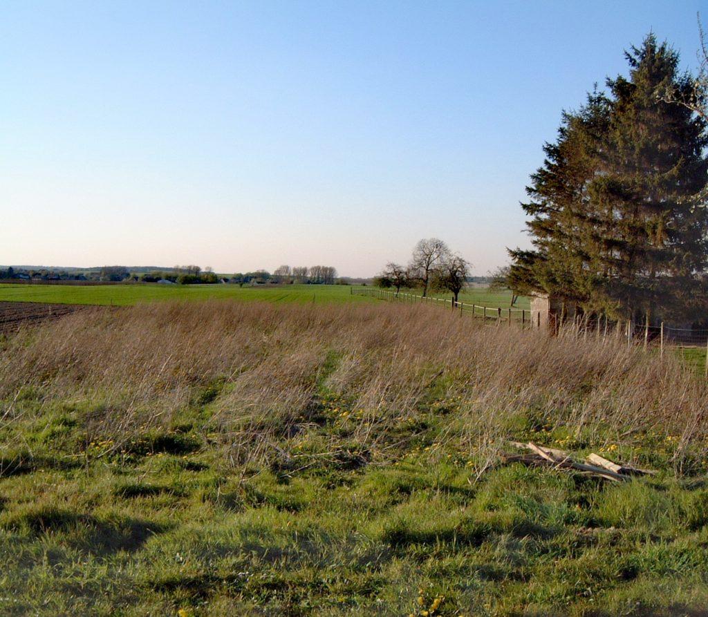 Steven Deschuyteneer De onbewuste problemen van de hippe tuin grond