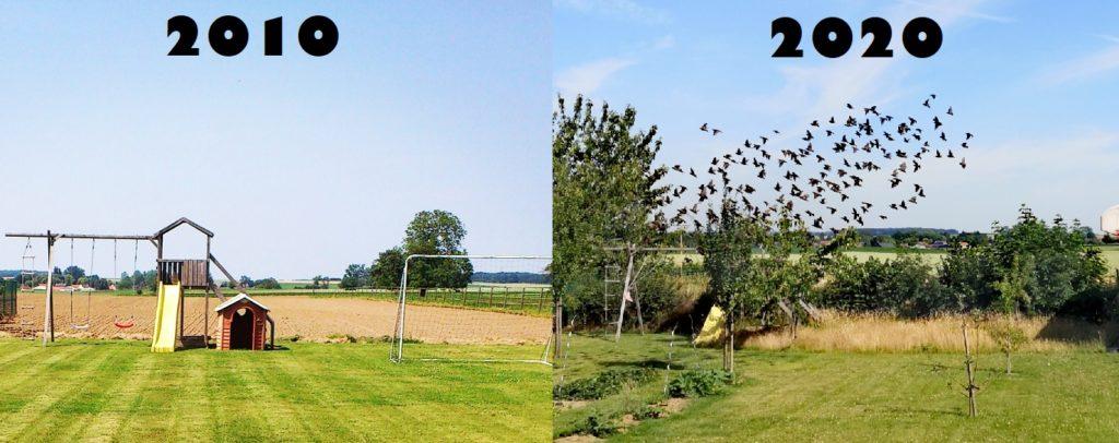 Steven Deschuyteneer Hoe eenvoudig u tuin gezonder maken 2010 vs 2020