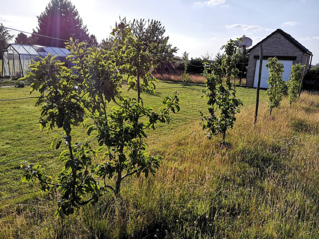 Steven Deschuyteneer Hoe eenvoudig u tuin gezonder maken landbouw leibomen