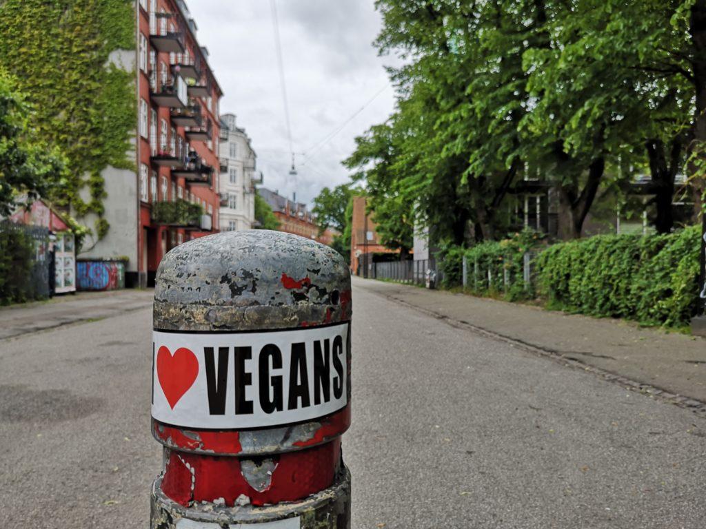 Steven Deschuyteneer Hoe en waarom iedereen Kopenhagen zou moeten bezoeken Kapelvej