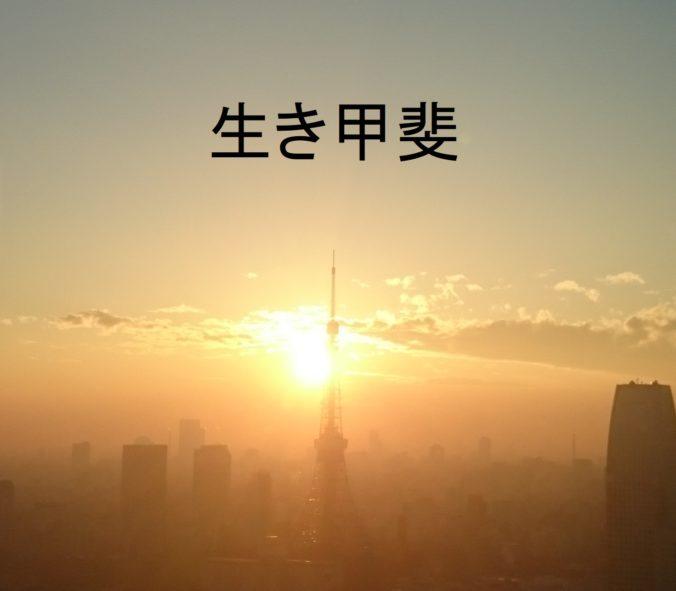 Steven Deschuyteneer Wat is u reden van bestaan Ikigai Tokyo