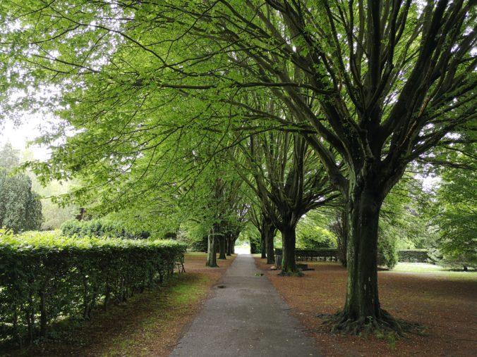 Steven Deschuyteneer Wat kan er geleerd worden van Kopenhagen park