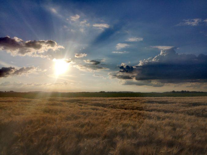 Steven Deschuyteneer Elke dag bidden, dit is het verschil dat het maakt natuur