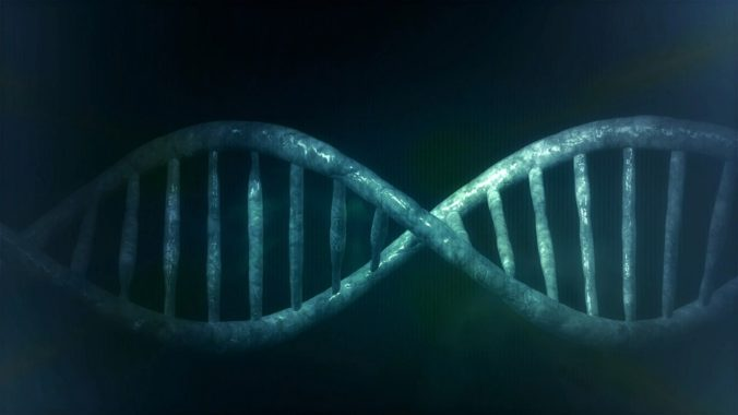 Steven Deschuyteneer Ik sport veel en verlies geen gewicht waarom DNA