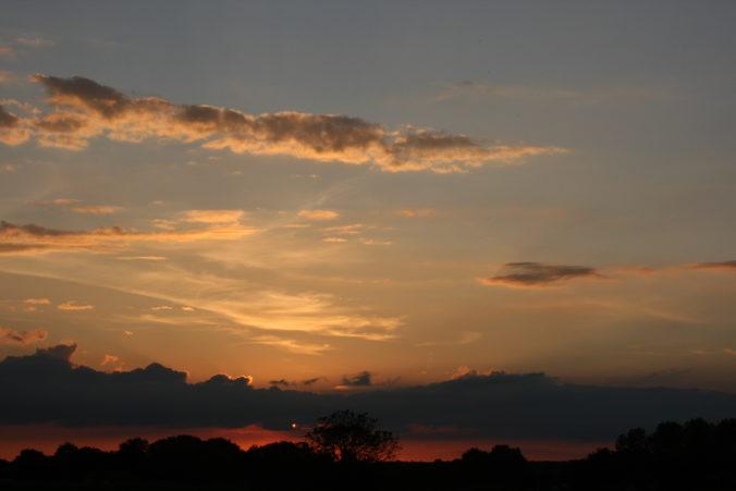 Steven Deschuyteneer De natuur zorgt voor alles en waarom is dat niet genoeg donker