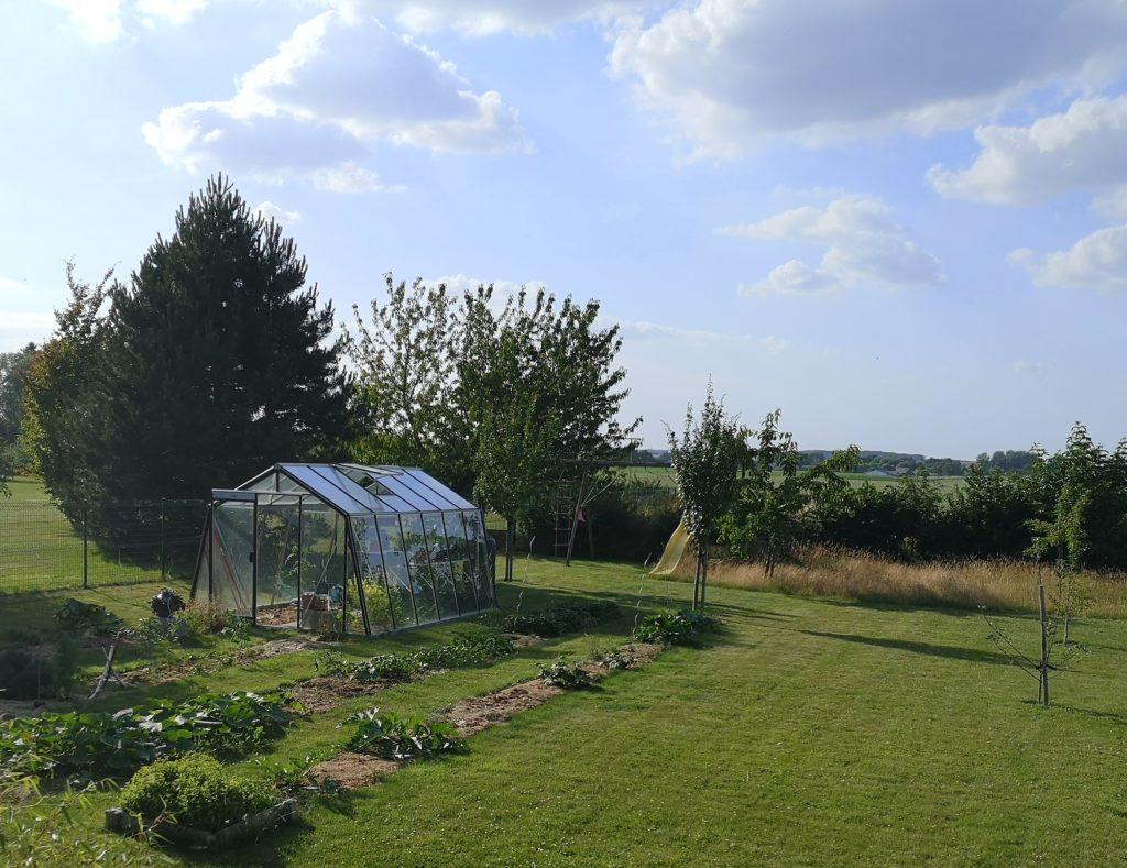 Steven Deschuyteneer Plantjes of zaadjes planten in de groentetuin tuin