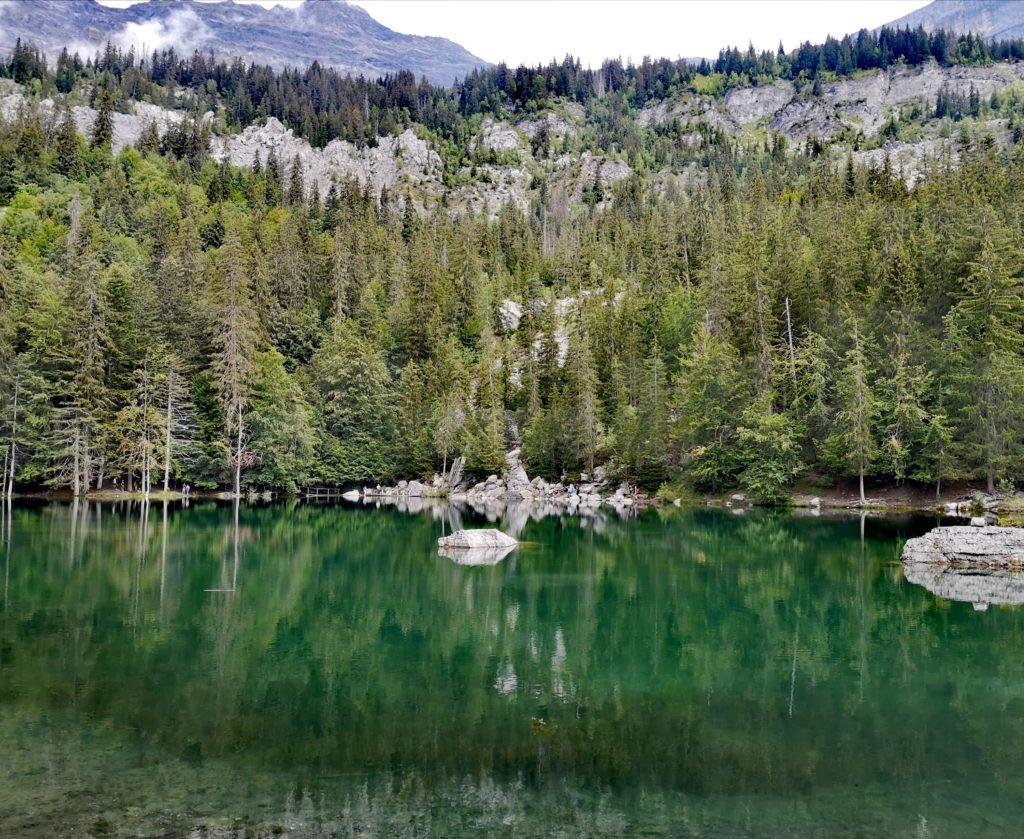Steven Deschuyteneer Waarom we zo graag eten wat we eten Lac Vert Passy