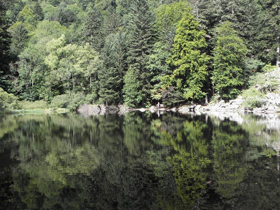 Steven Deschuyteneer Schrijf zelf eens een verhaal hier is het mijne ontwaken Alsace lac
